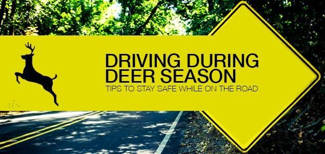 Driving Tips For Deer Season