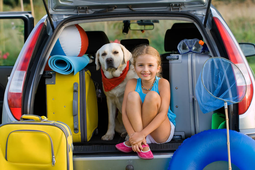Things You Should Know Before Taking Your Next Road Trip