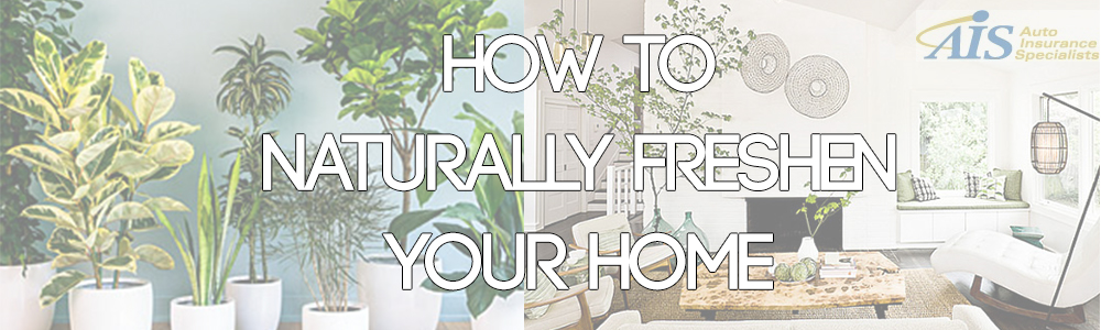Spring Cleaning: How to Naturally Refresh Your Home's Smell