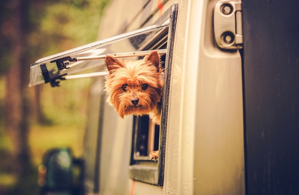 What's the Best Insurance Coverage for Your Travel Trailer?