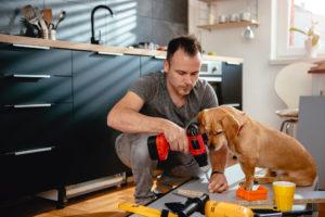 fixer upper dog helping