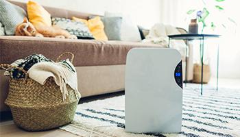 dehumidifier - air conditioning